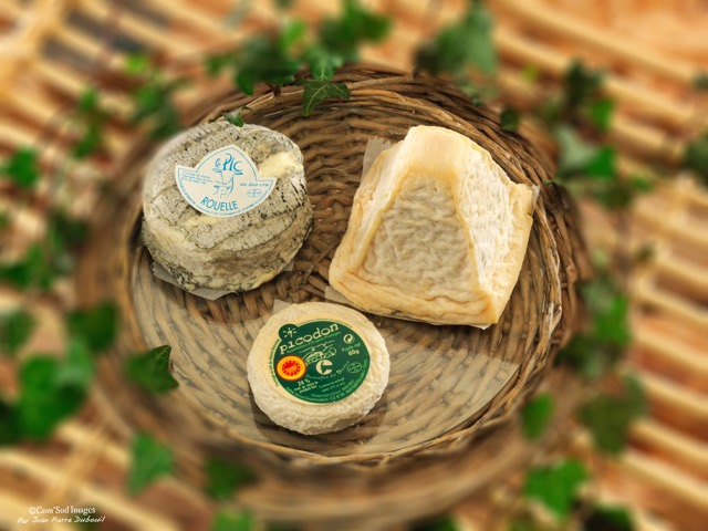 photographie fromages fermiers
