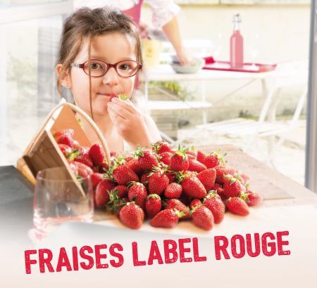 fraise label rouge com'sud